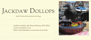 Jackdaw Dollops blurb